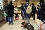 浜松駅に集合です、高校生が会場まで案内します。